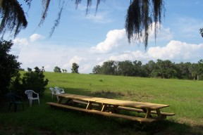 Our picinic area at the future site of our church building in Lecanto, Citrus County, FL